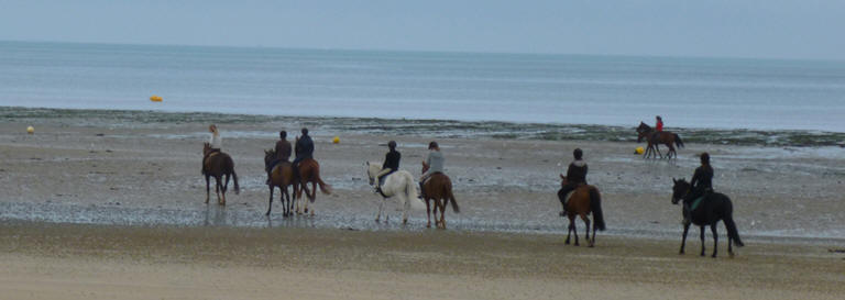 Horses on Normandie Beach
